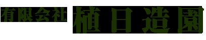樹木医診断・TreeHouse造り・特殊伐採・高木・巨木伐採はアーボリストチームの有限会社植日造園